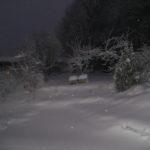 Talvikuvia 2